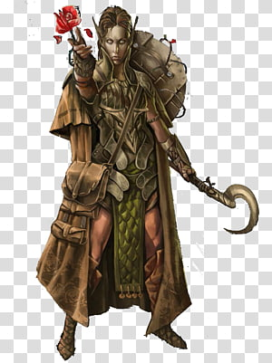 Druid Pathfinder Roleplaying Game d20 System Dungeons & Dragons Elf, Elf Ranger PNG