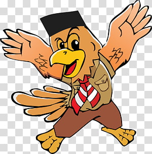 Gerakan Pramuka Indonesia Scouting Kwartir Nasional Chicken Jakarta, chicken PNG clipart