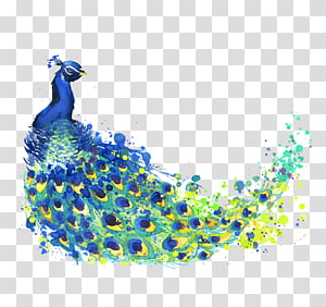 blue, green, and yellow peafowl illustration, The Peacock Feather Peafowl Drawing Watercolor painting Illustration, Watercolor Peacock PNG