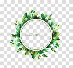 free green circle border pattern buckle PNG