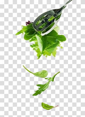 vegetables vegetables PNG clipart