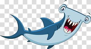 hammerhead shark illustration, Hammerhead shark Cartoon , Painted cartoon shark PNG clipart