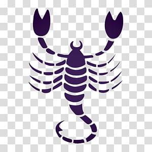 Scorpio Astrological sign Sun sign astrology Zodiac, scorpio PNG clipart