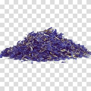 White tea Oolong Herbal tea, tea PNG