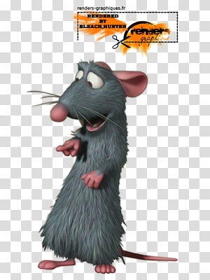 Rat Remy Rodent Murids, Rat & Mouse PNG