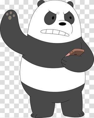 Bear Giant panda graphics , bear PNG