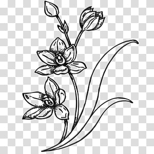 Drawing Sketch Flower, flower PNG clipart