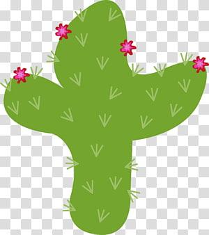 Golden barrel cactus Succulent plant Desert prickly pear, cactus PNG