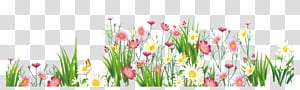 Flower Grasses , Flowers and Grass , yellow and pink flower illusration PNG