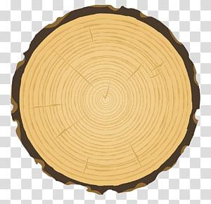 tree rings PNG