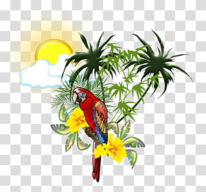 Scarlet macaw Parrot Bird , tropical PNG clipart