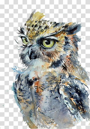 brown and gray owl oil painting, Owl Watercolor painting Drawing Art, Fierce owl PNG