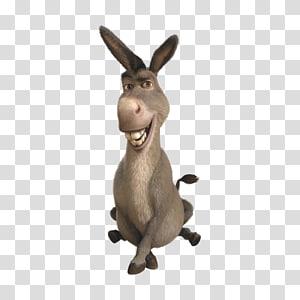 Donkey Princess Fiona Shrek Computer Icons , donkey PNG