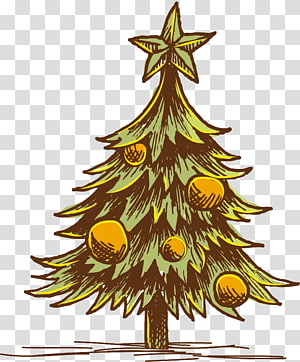 Christmas tree Christmas ornament, christmas tree PNG clipart