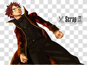 Natsu Dragneel Erza Scarlet Gray Fullbuster Fairy Tail Anime, fairy tail PNG clipart