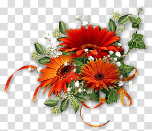 German chamomile Flower bouquet, chamomile PNG clipart
