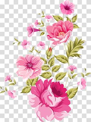 watercolor flowers bloom PNG