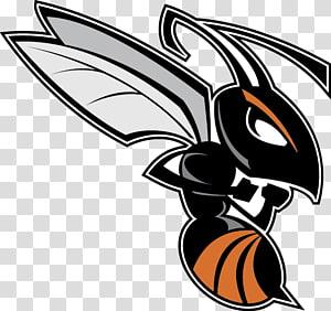 Kalamazoo College Kalamazoo Hornets football Trine University Michigan Intercollegiate Athletic Association Olivet College, hornet PNG