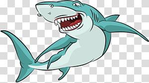 Shark , Cartoon shark PNG clipart