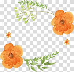 orange petaled flowers , Watercolor: Flowers Orange Watercolor painting, Orange watercolor flower title box PNG clipart