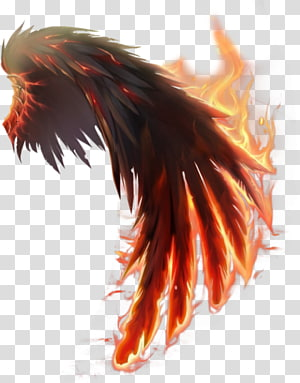flaming wing illustration, Wings of Fire Computer Icons, wings PNG