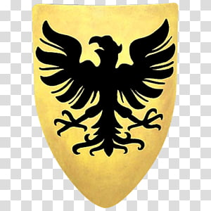 Heater shield Middle Ages Coat of arms Knight, shield PNG