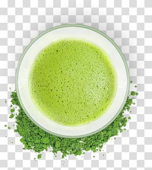 green tea powder surrounded by white ceramic teacup, Green tea Matcha Coffee Caffeine, matcha PNG
