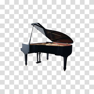 Piano Musical instrument, piano PNG