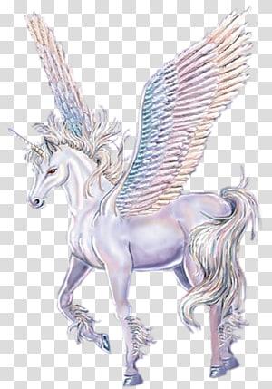 Horse Winged unicorn Legendary creature Pegasus, horse PNG