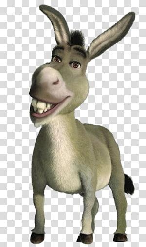 Donkey Shrek Film Series Princess Fiona Drawing, donkey PNG