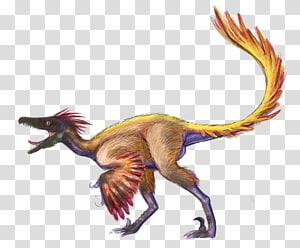 Velociraptor Utahraptor Dromaeosaurus Troodon Dinosaur, dinosaur PNG clipart