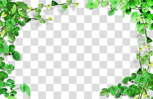 green leaves frame,plant frame PNG