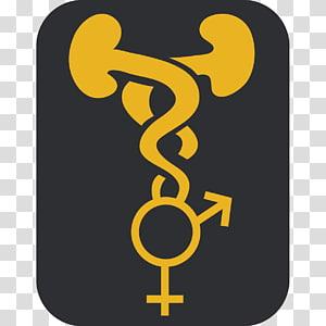 Gender symbol Gender equality Man, symbol PNG clipart