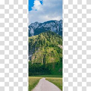 Mount Scenery Mountain Trail Walkway Wood, mountain PNG clipart