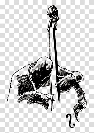 graphics Drawing Double bass Musician Jazz, musical instruments PNG