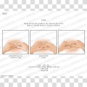 Skin Ear Animal Eye, ear PNG clipart