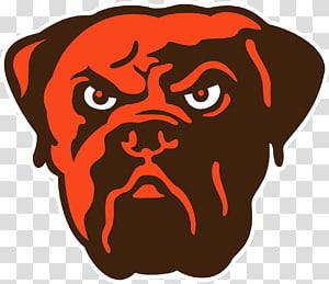 Cleveland Browns NFL FirstEnergy Stadium Tampa Bay Buccaneers Cincinnati Bengals, Hotdog PNG