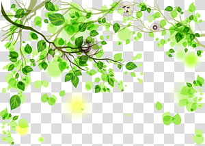 green leaves illustration, Green, Green background PNG clipart