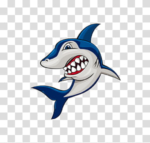 Shark Cartoon , Cartoon shark PNG clipart