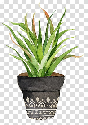 green leafed plant with gray pot painting, Watercolor painting Cactaceae Printing Printmaking, Potted aloe PNG clipart