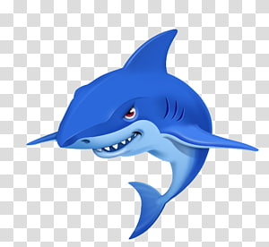 Shark Cartoon Drawing Illustration, whale PNG clipart