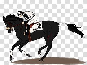 Stallion Mustang English riding Pony Rein, mustang PNG