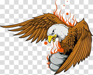 brown and white eagle , Old school (tattoo) Eagle , flame eagle printing PNG clipart