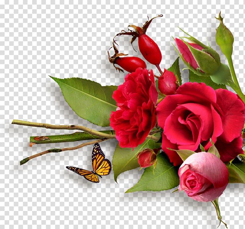 Cut flowers Rose Floral design Flower bouquet, flower PNG