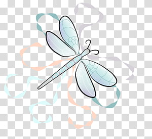Insect Product design Turquoise Graphics, insect PNG clipart