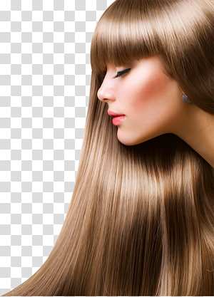 women's brown hair, Hair Care Brazilian hair straightening Beauty Parlour, hair PNG clipart