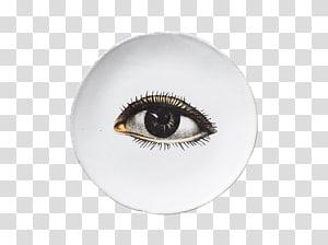 Eyelash extensions Artificial hair integrations John Derian, Eye PNG clipart