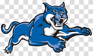 State University of New York at New Paltz Purchase SUNY Polytechnic Institute Ramapo College Springfield College, Wildcat Basketball s PNG