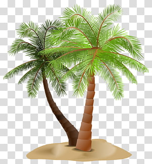 two coconut trees illustration, Arecaceae , Palms in Sand PNG clipart