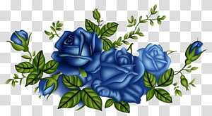 blue rose PNG clipart